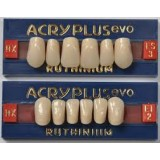 Acry Plus Evo Rx [Dientes Superiores]