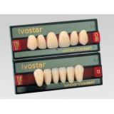 Ivostar A-d Anteriores (dientes Superiores)