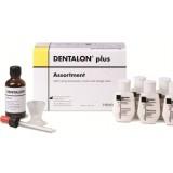 Dentalon Plus [HERAEUS-KULZER]