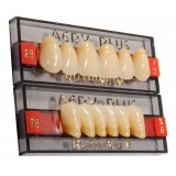 Acry Plus V [Dientes Superiores]